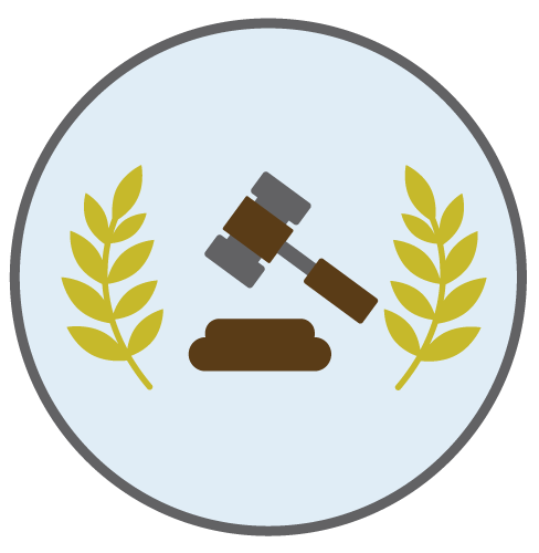 Laws and Public Policy banner image